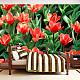 Фототапет - Painted flowers, Фототапети, Цветя
