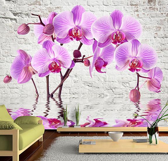 Фототапет - Purple Delight, Фототапети, Цветя