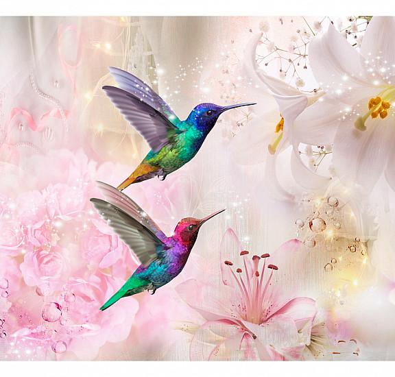 Фототапет - Colourful Hummingbirds (Pink), Фототапети, Фототапети